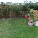 cottage-garden-before-01